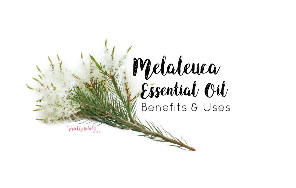 doterra melaleuca uses benefits