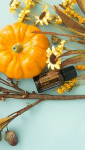 doterra clove essential oil